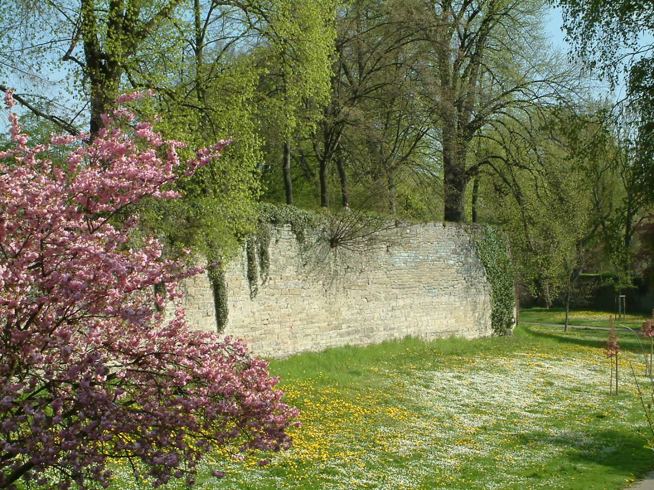 Der Wall in Soest heute als Parkanlage in der Gräfte